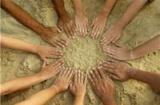 Grupos para practicar la Theta
